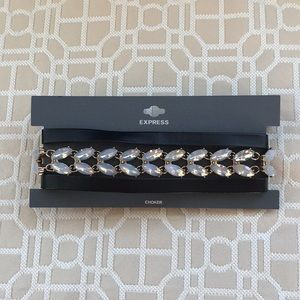 Beautiful choker from Express. New with tags!